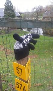 Blij_nieuws_handschoen